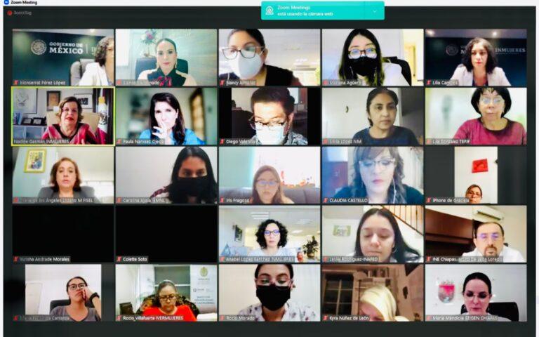 TEED presente en la Conferencia Magistral virtual organizada por INMUJERES.